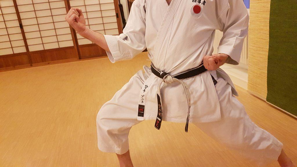 Karate Technik